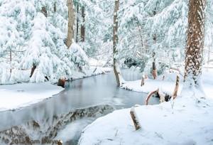 A Winter Wonderland-0587