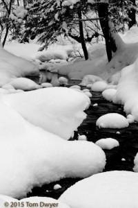 Winter Baltimore Woods stream