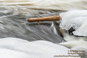 Isn't it amazing how much a  log frozen in the ice can add some color to a winter composition?