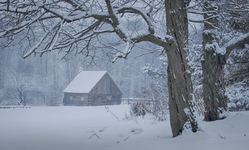 I can't visit Baltimore Woods without photographing it's iconic log cabin...especially in winter.