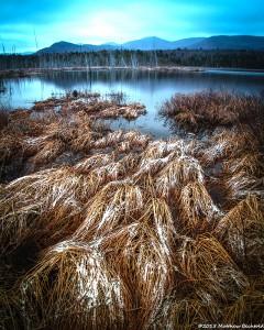 Shaw Pond by Matt Bechtold